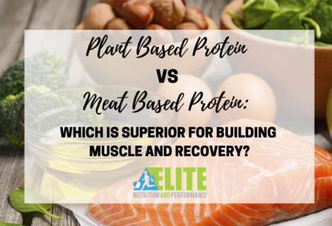 Plant Based Protein vs Meat Based Protein – Which is Superior for Building Muscle and Recovery?